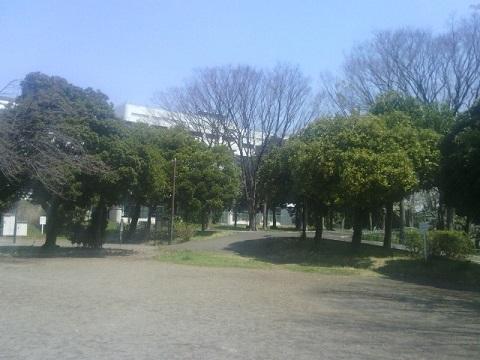 子安台公園