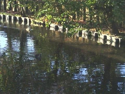 桝形付近の二ヶ領用水