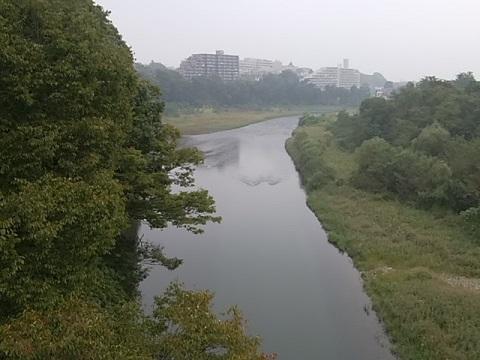 河辺の渡し