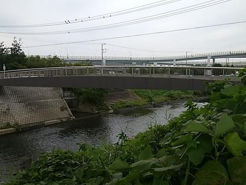 谷本人道橋