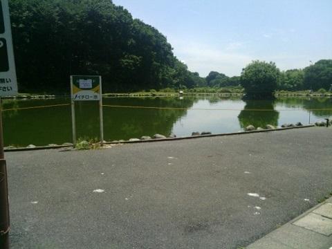 FISH・ON王禅寺