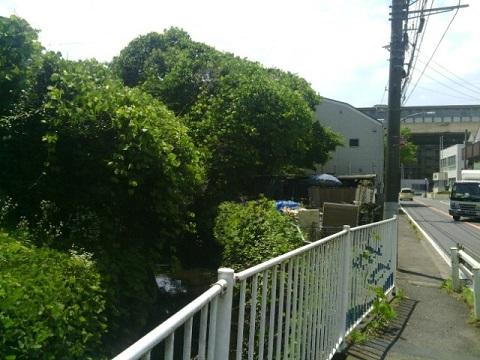 第三京浜付近