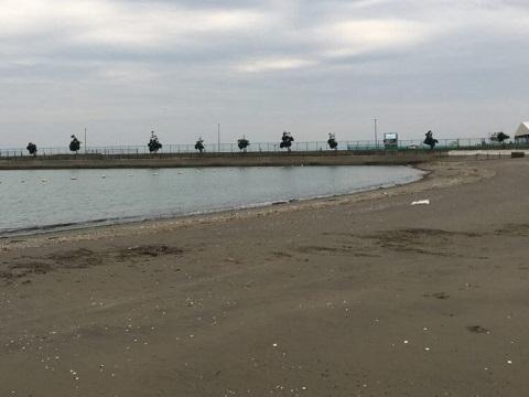 東公園人工浜