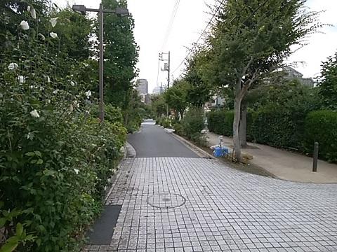 コミュニティ道路