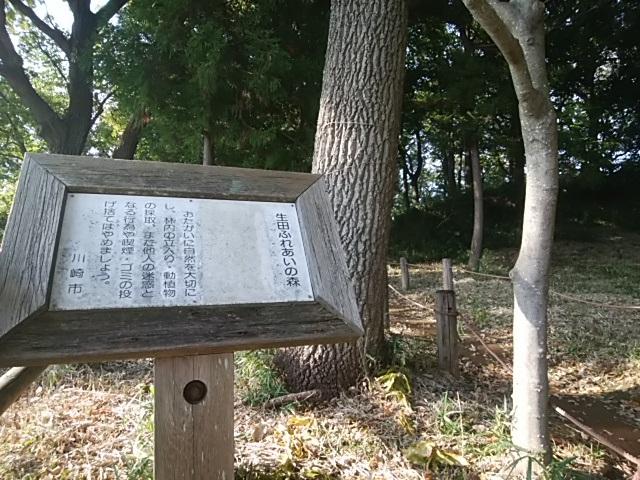 生田ふれあいの森