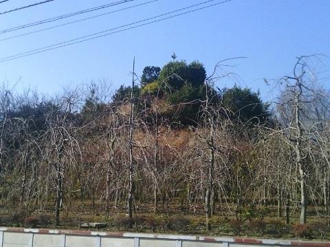 富士塚古墳址