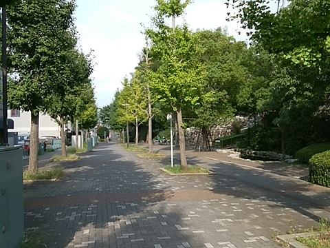 中川花と緑の散歩道