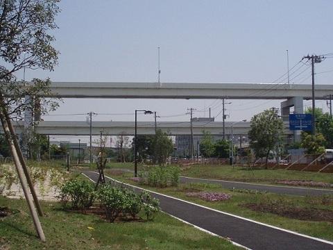 貨物線の森緑道
