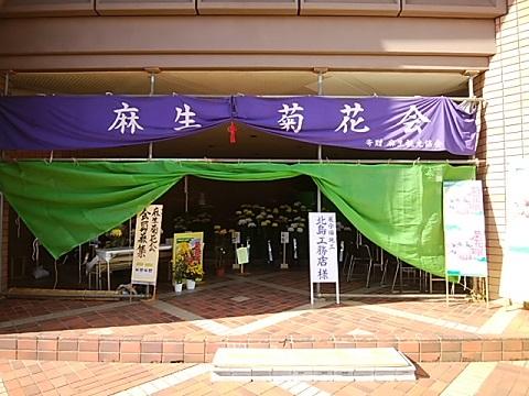 麻生菊花大会