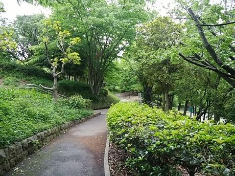 鴨志田公園