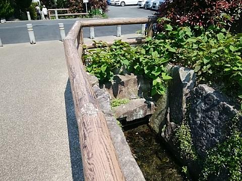 入江川第三子園橋