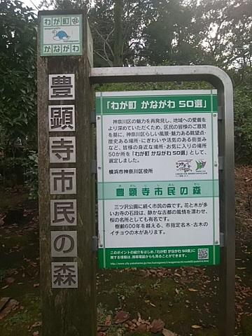 わが町かながわ50選豊顕寺市民の森