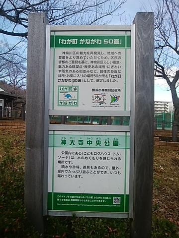 わが町かながわ50選神大寺中央公園