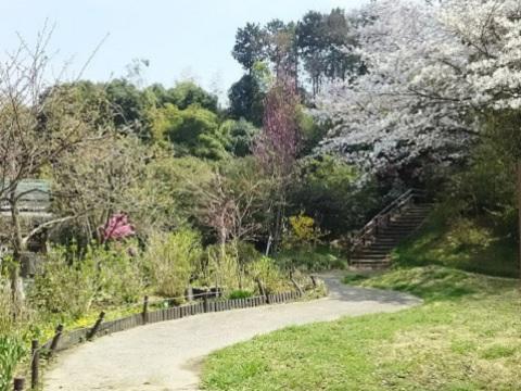 上山町公園