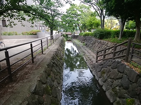 平和公園の中の流路