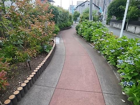 町田堀遊歩道