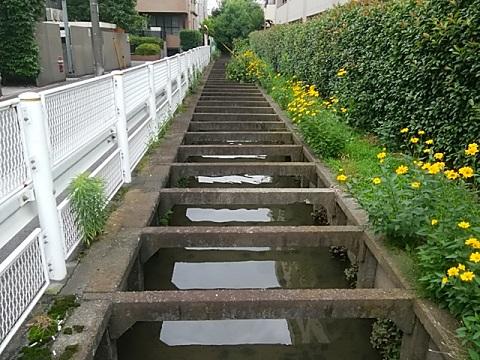 五ヶ村堀用水