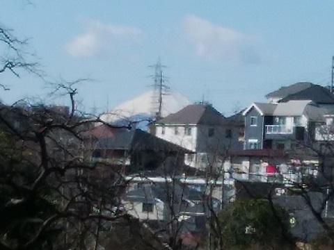 馬場花木園富士山