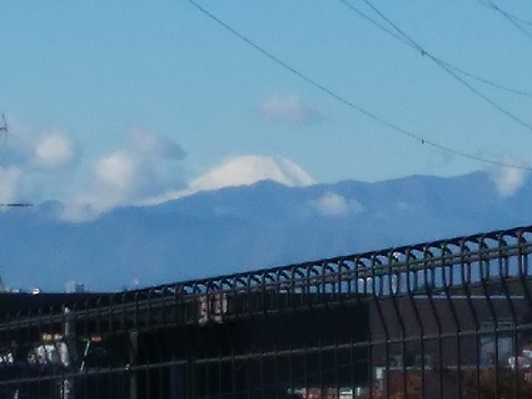 富士見ヶ丘富士山
