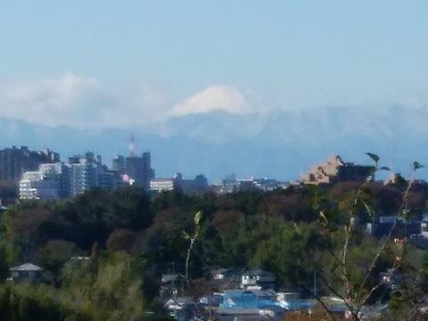 早淵公園富士山