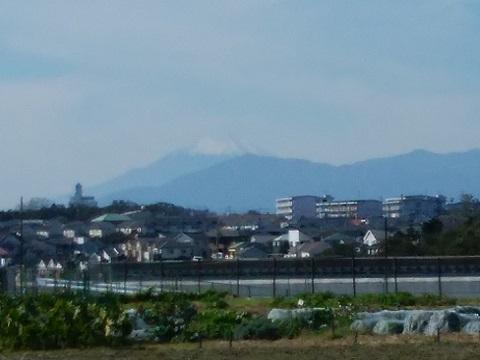 片倉3丁目の畑富士山