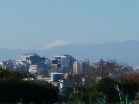 北八朔町1810富士山