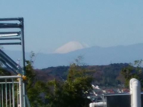 小山保育園富士山