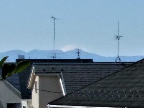長沢1丁目富士山