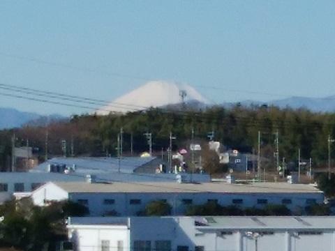 桜並木の富士山
