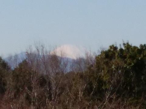 四季の森公園富士山