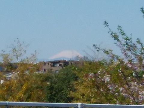 末長富士見台富士山