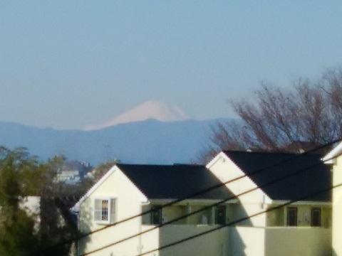 高田東小学校富士山