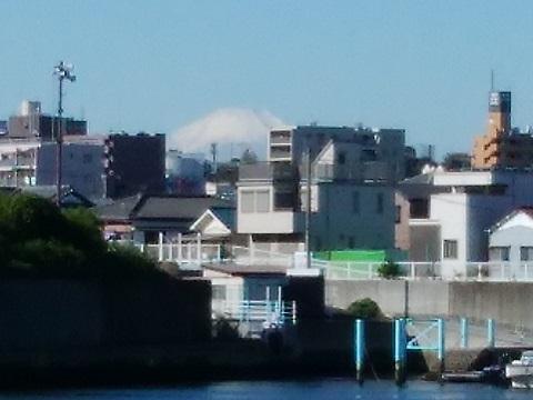 鶴見川左岸河口富士山