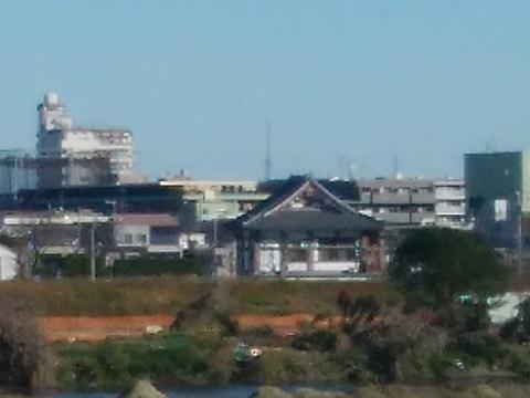多摩川古市場土手