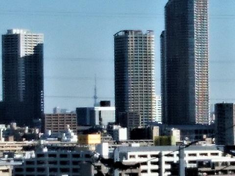市立井田病院