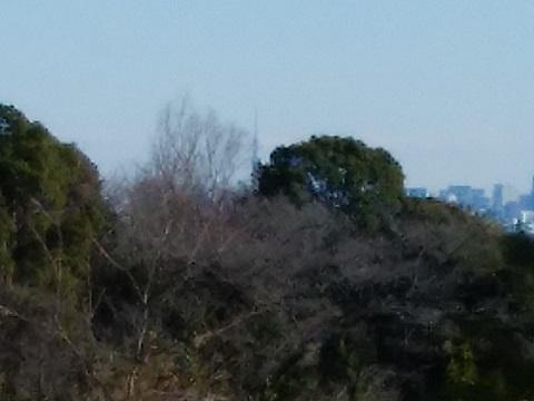 生田緑地ゴルフ場