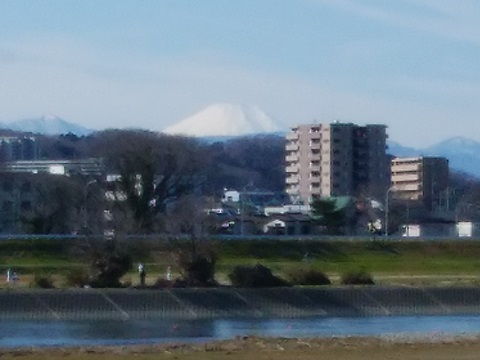 調布市多摩川3丁目土手富士山