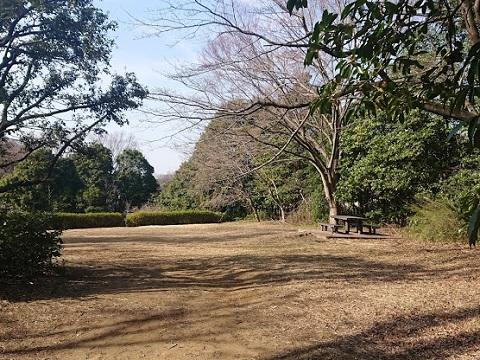 獅子ヶ谷市民の森灰ヶ久保広場
